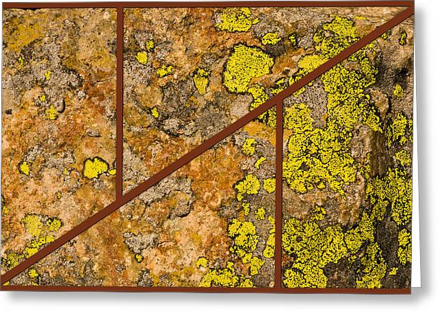 Iron And Lichen Greeting Card