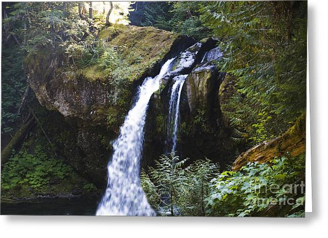 Iron Creek Falls Greeting Card by Rich Collins