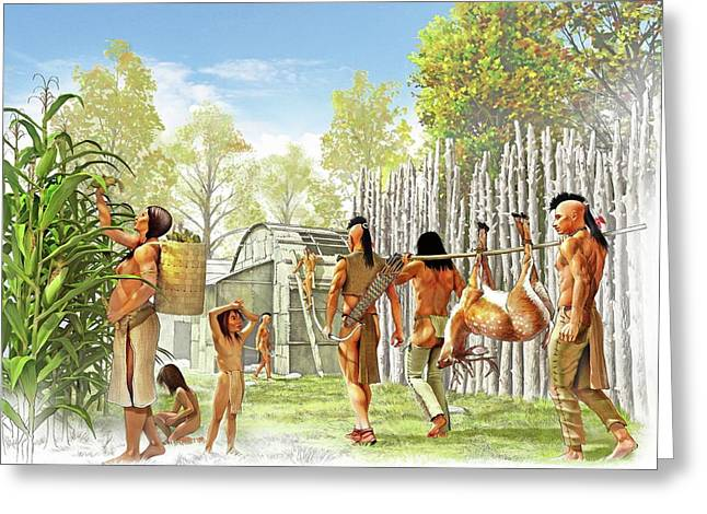 Iroquois Settlement Greeting Card by Jose Antonio Pe�as