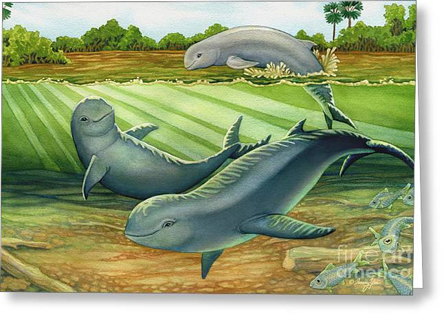 Irrawaddy Or Mekong River Dolphin Greeting Card by Tammy Yee