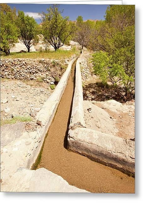 Irrigation Channel Greeting Card by Ashley Cooper