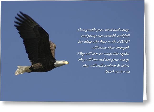 Isaiah 40 Greeting Card by Corey Haynes