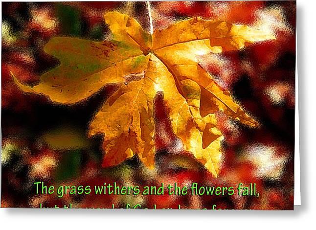 Isaiah Autumn Leaf Greeting Card by Michele Avanti