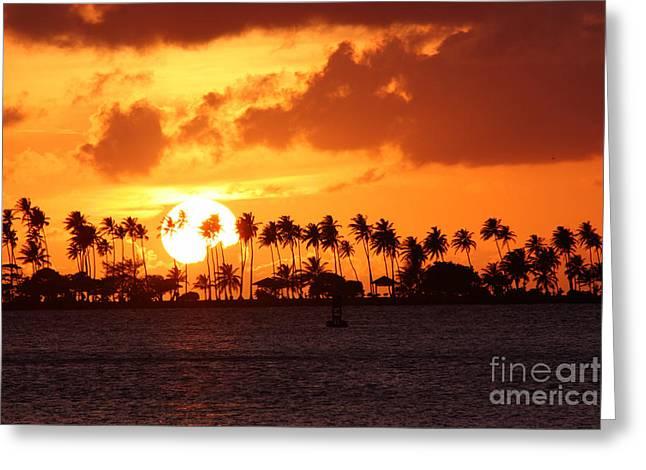 Isla De Leprosos Greeting Card