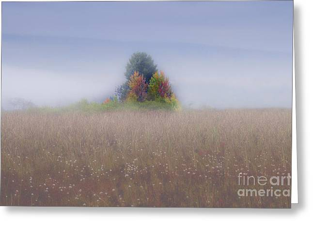 Island Of Color In Sea Of Fog Greeting Card