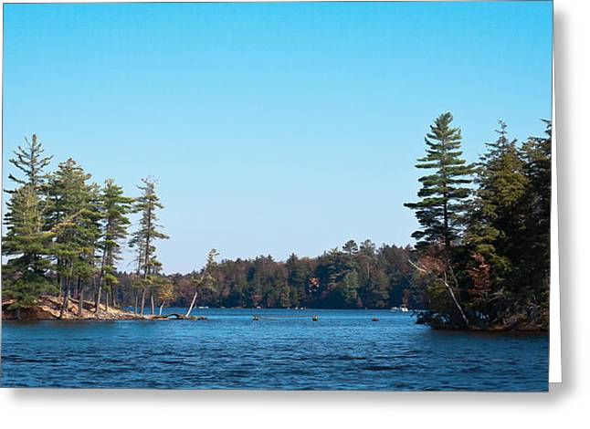 Island On The Fulton Chain Of Lakes Greeting Card by David Patterson