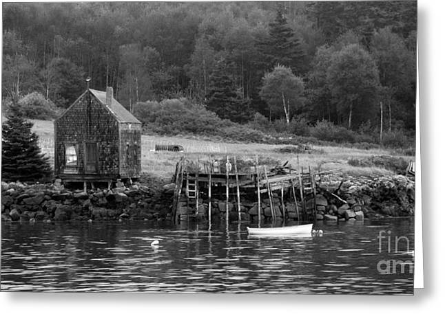 Island Shoreline In Black And White Greeting Card