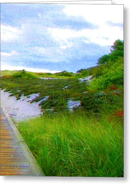 Island State Park Boardwalk Greeting Card