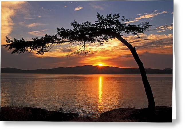 Island Sunrise Greeting Card