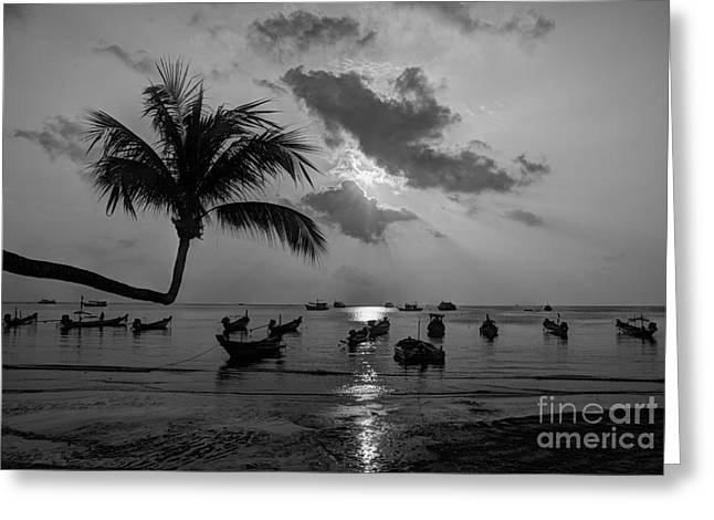 Island Sunset Greeting Card by Alex Dudley