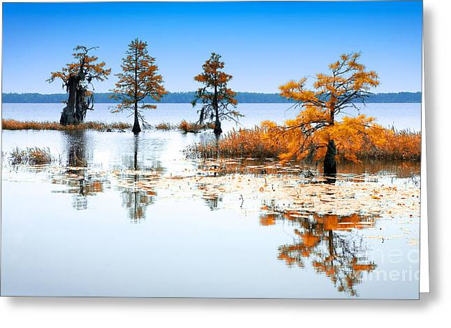 Isle Of Peace - North Carolina Greeting Card