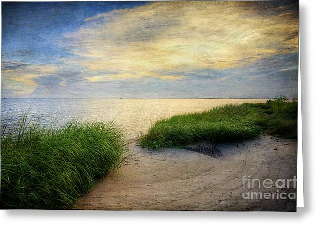 Isolated Beach Sunset Greeting Card
