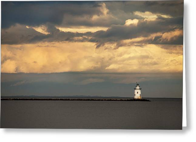 Isolated Greeting Card by Jonathan Steele