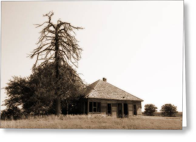 Greeting Card featuring the photograph Isolated by Shirley Heier