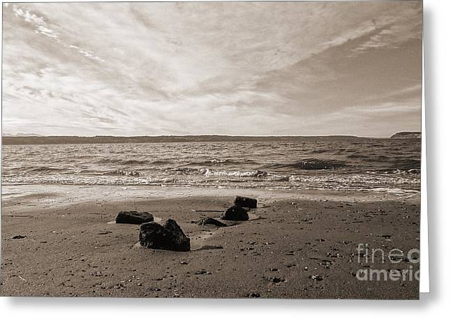 Greeting Card featuring the photograph Isolation by Arlene Sundby