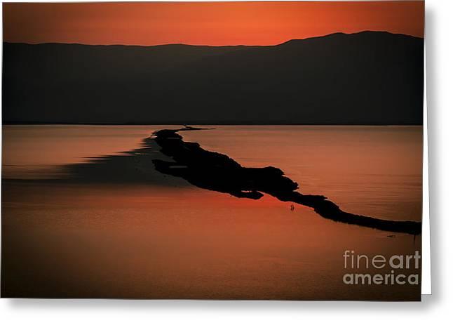 Israel Dead Sea 1 Greeting Card by Dan Yeger