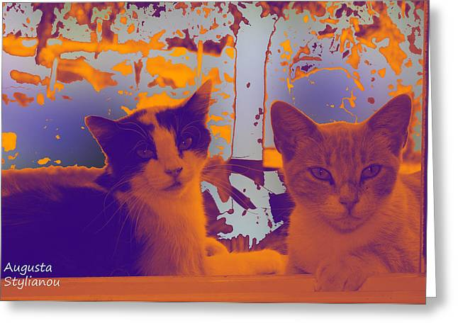 Istar And Aphrodite Cats Greeting Card by Augusta Stylianou