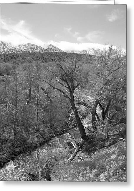 It Flows From The Source - California Greeting Card