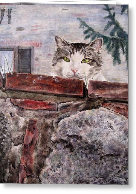 Italian Cat Greeting Card by Karen Peterson