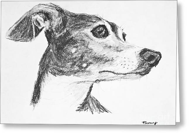 Italian Greyhound Sketch In Profile Greeting Card