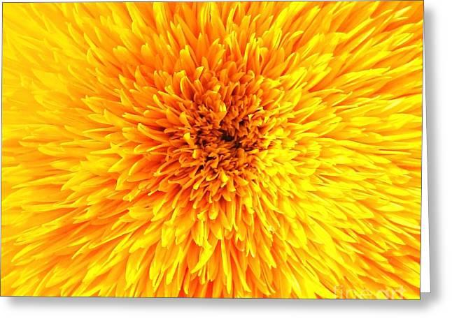 Italian Sunflower Detail Greeting Card by C Lythgo