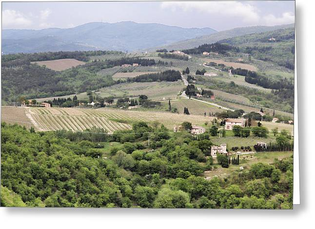 Italian Vineyards Greeting Card by Nancy Ingersoll