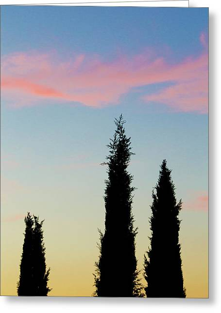 Italy, Orvieto Cypress Trees And Cloud Greeting Card