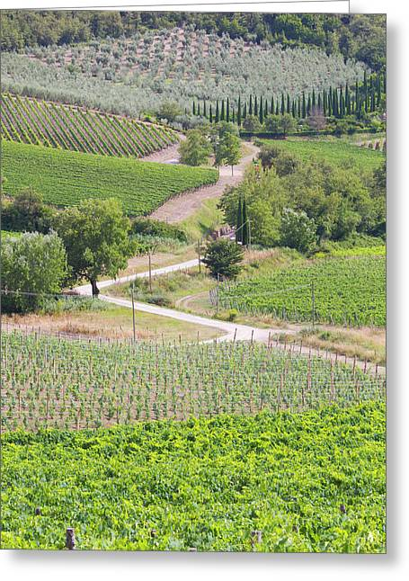 Italy, Radda Colle Bereto Winery Greeting Card by Jaynes Gallery