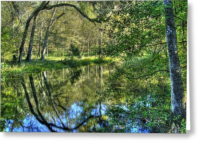 Itchetucknee Springs 03 Greeting Card