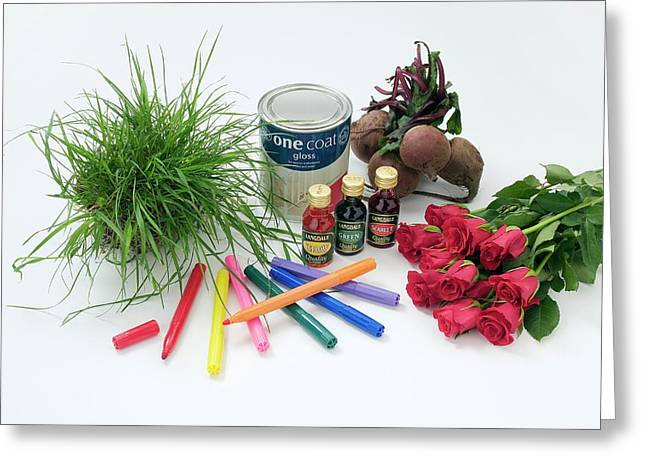 Items Containing Coloured Pigments Greeting Card