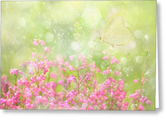 It's A Beautiful Day... Greeting Card