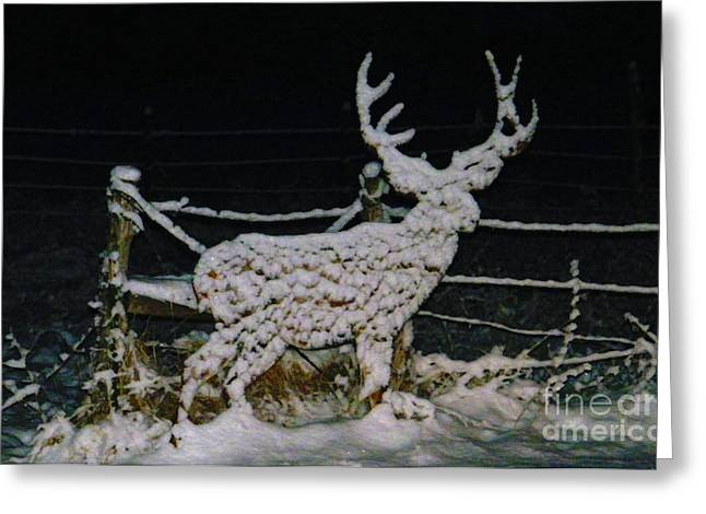 It's Cold Out Here Greeting Card