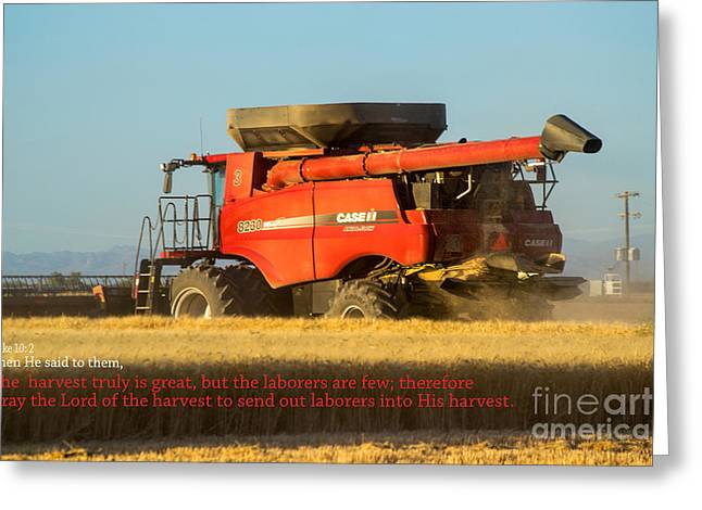 It's Harvest Time Greeting Card