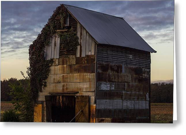 Ivy Barn Greeting Card