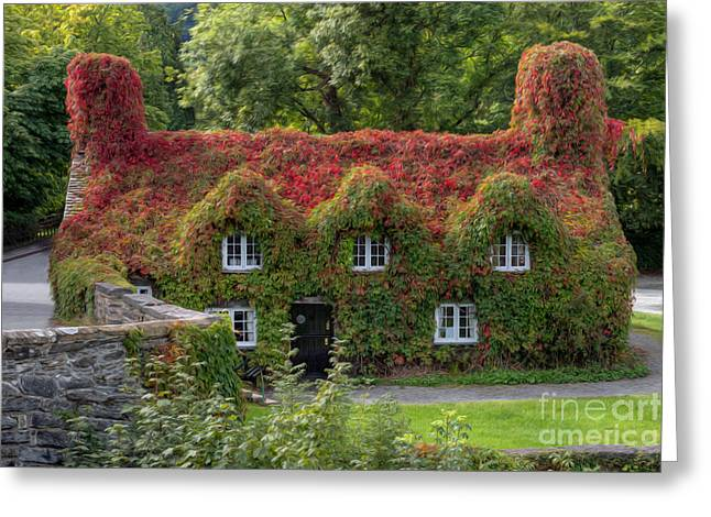 Ivy Cottage Greeting Card by Adrian Evans