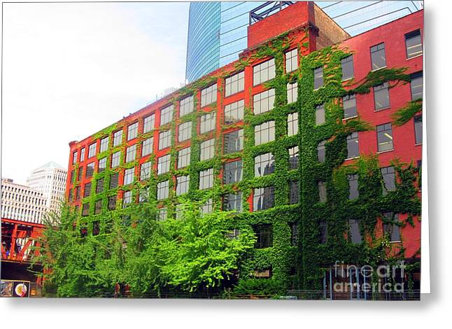Ivy-covered Building On The Chicago River Greeting Card by Matthew Peek