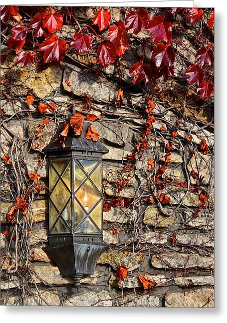 Ivy Lantern Greeting Card by Frozen in Time Fine Art Photography