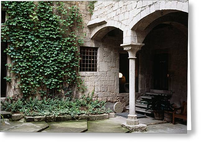Ivy On The Wall Of A House, Girona Greeting Card by Panoramic Images