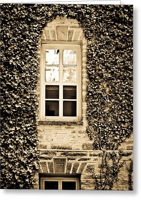 Ivy Windows In Sepia - Princeton University Greeting Card