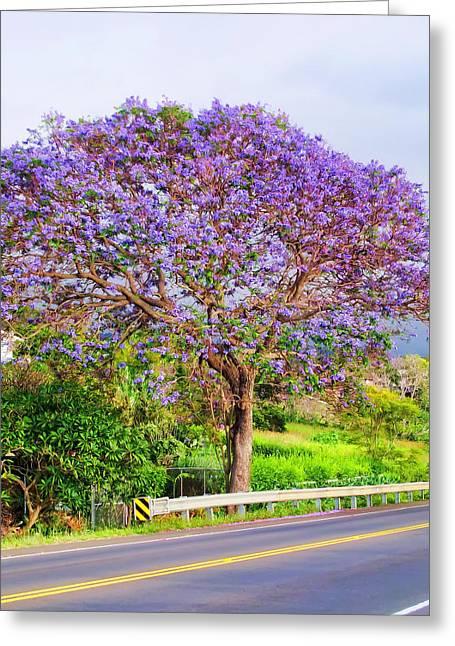 Jacaranda 4 Greeting Card by Dawn Eshelman