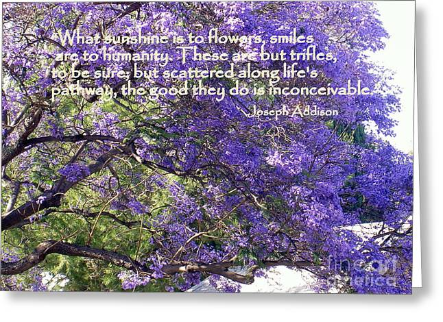 Jacaranda Beauty Smile Quote Greeting Card by Marlene Rose Besso