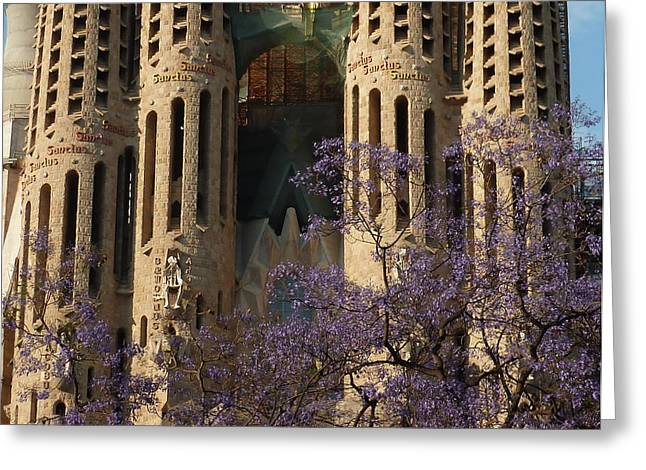 Jacaranda In Barcelona Greeting Card by Christine Burdine