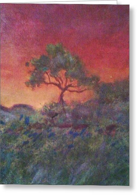 Jacaranda Tree Greeting Card by Joy Gilley
