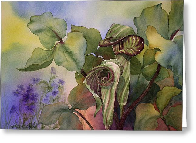 Jack In The Pulpit Greeting Card