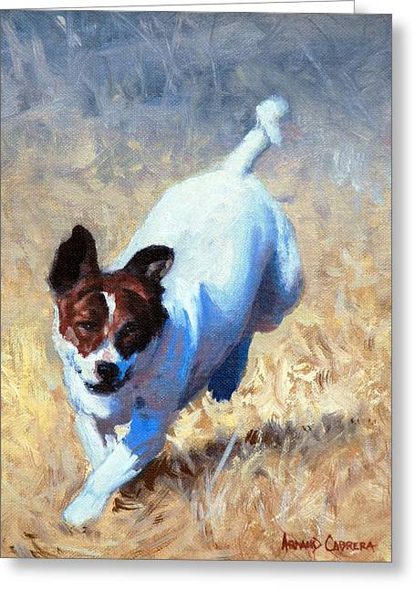 Jack Russell Bounce Greeting Card