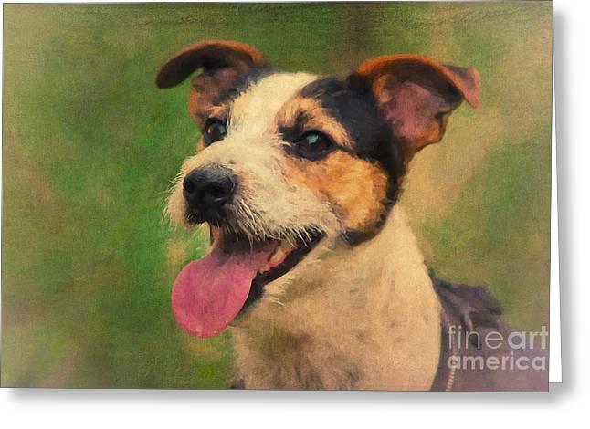 Jack Russell Terrier Portrait Greeting Card by Angela Doelling AD DESIGN Photo and PhotoArt