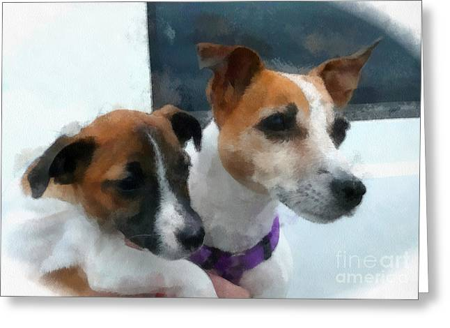 Jack Russells Greeting Card by Betsy Cotton