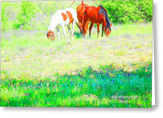 Jack Smokey And Camelot Texas Spring A Greeting Card