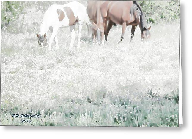 Jack Smokey And Camelot Texas Spring C Greeting Card