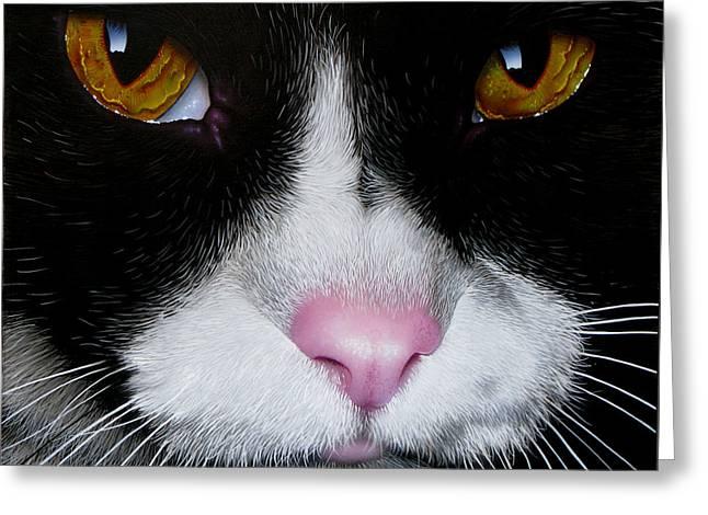 Jack The Cat Greeting Card by Jurek Zamoyski